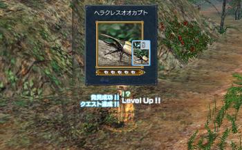 Dai0278